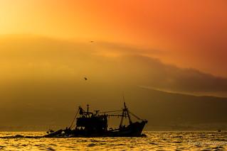 La pêche dorée.