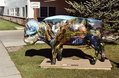 00000015 (Gearys Gallery 1) Tags: sex susc dixiecollege geary paintedbuffalo westyellowstone buffallo wy stgeorge cedarcity