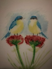 aves-birds (denisplaza) Tags: acuarela watercolor aves pintura chile santiago