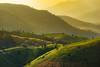 Mountain and lighting (Aksons[art]ist) Tags: mountain nature sunset sunrise light tree lighting landscape sence