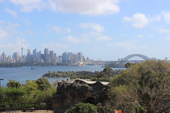 Skyline / Taronga Zoo
