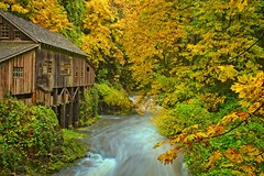 Cedar Creek Grist Mill 4532 E (jim.choate59) Tags: autumn fallseason gristmill cedarcreekgristmill clarkcounty washington scenic landscape creek water jchoate d610 on1pics