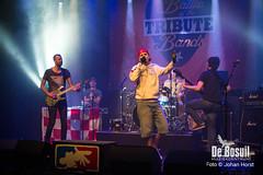 2017_10_27 Bosuil Battle of the tributebandsLIM_6465-Full Nelson  Limp Bizkit Tribute Johan Horst-WEB