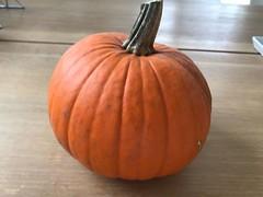 """Happy Halloween! Unsere Vokabel für heute: Der Kürbis. Die Kürbisse. Guten Appetit! • <a style=""""font-size:0.8em;"""" href=""""http://www.flickr.com/photos/42554185@N00/38059100801/"""" target=""""_blank"""">View on Flickr</a>"""