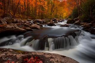 Autumn Round Cascade