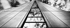Towerfront (MAICN) Tags: glass vhs building himmel mono sw frankfurt skyscraper blackwhite monochrome 2017 glas schwarzweis spiegelung sky bw einfarbig hochhäuser architektur gebäude