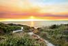 Cape to Cape (MPWA11) Tags: westernaustralia dunsborough yallingup rabbits sunset track love australia