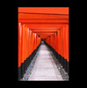 5000 Tore (Hildegard Spickenbaum) Tags: fushimiinaritaishatempel kyoto tore feuer