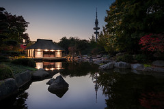 Japanischer Garten & Teehaus (StoneAgeKid) Tags: teehaus planten blomen tea house japanese japanisches fernsehturm telemichel sunset hamburg germany lights reflection reflektionen garden garten stille blaue stunde blue hour un park