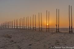 Zonsopkomst 15-10-20-17 Texel (Chantal van Breugel) Tags: zonsopkomst texel zee strand landschap zon herfst 2017 canon5dmark111 canon1635