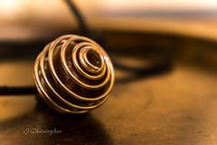 Spiral (jaybrd13) Tags: macromonday spiral jewel silver macro dreams