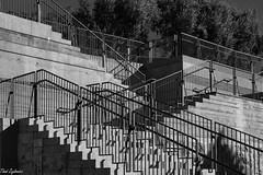 Stone Stairs, Iron Railings in monochrome (Thad Zajdowicz) Tags: pacificpalisades california usa zajdowicz thegettyvilla gettyinspired travel canon eos 5dmarkiii 5d3 dslr digital ef24105mmf4lisusm availablelight lightroom architecture stairs railings outdoor outside lines angles light shadows geometric pov blackandwhite bw black white monochrome
