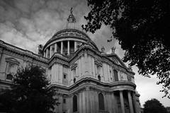 Full Frame & Tilt Shift - London (Sam Taylor Photography) Tags: london architecture autumn monument nature england stpaulscathedral blackwhite monochrome sunshine sunlight afternoon canon5ds 24mmtse tiltshiftlens fixedfocallens