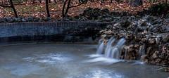 paseando por el parque. (M,L.C.*) Tags: parques otoño hojas agua color nikon canales