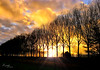 fire (Wilma van Oorschot) Tags: wilmavanoorschot angelphotography olympus sunset sundown trees clouds colors outdoor nature