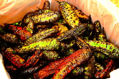 Roasted Chiles (richardzx) Tags: greenchile albuquerque richardzx