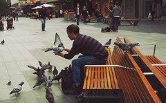 Pigeon Man (RP Major) Tags: man person pigeon bird south australia adelaide rundle mall