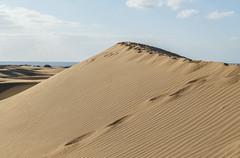 Edge (Robby van Moor) Tags: grancanaria maspalomas dunas dunes sand beach strand sea foot prints
