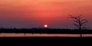 Sunset over Lake Manze, Selous Game Reserve