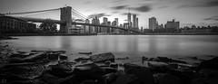 Brooklyn Bridge (dansshots) Tags: ny nyc newyorkcity newyork dansshots nikon wtc worldtradecenter bnw blackandwhite blackandwhitephotography blackandwhitenewyorkcity blackandwhitephoto brooklynbridge