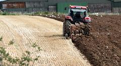 Furrows (Ken Meegan) Tags: furrows ploughingafield saltmills cowexford ireland tractor plough ploughing farming 992017