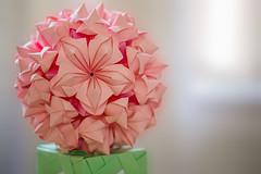 Modular Origami (Meu :-) (Offline)) Tags: modular origami kusudama macro photography fivepetalsorigamiflower