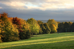 Autumn colours at University of Kent (Jim_Higham) Tags: he higher education excellent teaching beautiful campus afternoon golden light uk england british britain english