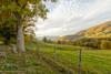 Appalachian Meadow (Singing Like Cicadas) Tags: 2017 appalachia autumn fall october westvirginia farm pasture meadow field harman outdoors fence fenceline 1000gifts onethousandgifts randolphcounty