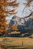 DSC_3684small (wonderarta) Tags: south tyrol nature atumn mountains dolomiti nikon landscape italy europe travel