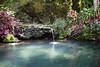 Piscine naturelle (Ye-Zu) Tags: piscine tdm swimingpool bali nature tourdumonde worldtour munduk indonésie