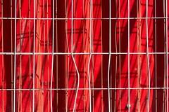 Fence, shadows and red wall (Jan van der Wolf) Tags: 173178 fence hekwerk shippingcontainer container linearinterplay lines interplayoflines lijnen lijnenspel schaduwspel schaduwen shadowplay red redrule monochrome