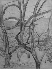 SERUSIER Paul - Le Verger (Louvre RF40965-Recto) - Detail 17 (L'art au présent) Tags: details détail détails detalles drawings dessins croquis étude study studies sketch sketches dessins19e 19thcenturydrawings dessinfrançais frenchdrawings peintresfrançais frenchpainters louvre paris france musée museum arbres tree trees trunk orchard grove nature