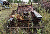 DSC_0911 v2 (collations) Tags: ontario mcleansautowreckers autowreckers wreckers automobiles autos abandoned rockwood derelict junkyards autograveyards carcemeteries