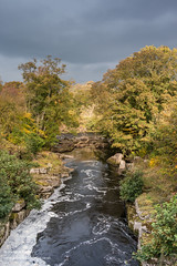 The Meeting of the Waters, Autumn 3 (Richard Laidler) Tags: autumn autumncolour autumncolours autumntints bubbles color colors colour colourful colours confluence countydurham darksky deciduous fall foam froth gold greta lowerteesdale northeastengland river riverbanks rivers rock rocks rokeby sun sunny sunshine tees teesdale tints trees wood woodland woods yellow