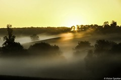 Sunrise (Viictor B) Tags: sun sunset sunrise sunshine country fog frog mist tree trees water eau drops waterdrops flower flowers countryside land landscape beautiful fresh wonderful gorgeous time capture canon eos lens bokeh red yellow sud ouest france europe