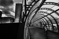 Walkway (Jonathan Vowles) Tags: poplar canarywharf londonm walkway