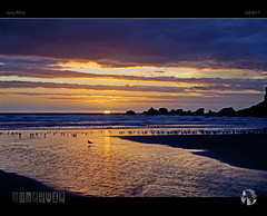I Run and I Run to Catch Up with the Sun... (tomraven) Tags: sunset seagull gul seagulls degull dancinggull tomraven aravenimage clouds sky sun beach shadows silhouettes rocks reflections q42017 sony a58