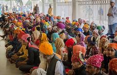 Avant un repas (mcastonguay60) Tags: delhi inde indiscrétionindien sikh temple intérieur uttarpradesh