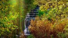 Waterfall Autumn (YᗩSᗰIᘉᗴ HᗴᘉS +8 500 000 thx❀) Tags: waterfall cascade autumn automne saison season water belgium belgique arbre nature eau