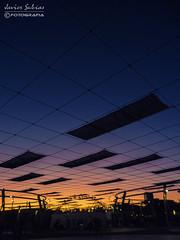 Sunset - EXPO - Zaragoza (Javier_Subias) Tags: suntet atardecer ocaso zaragoza aragon españa paisaje landscape expo colores colour sky bluehour goldenhour subias escozkor cielo sun sol