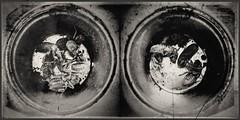 Metamorphosis-11668 (Poetic Medium) Tags: moldiv stilllife blackandwhite snapseed rni kitcamghostbird ipod bug diptych