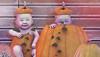 The Chapter Four :) (♥ Stasey Oller ♥ [Black Bantam]) Tags: black bantam pink acid pumpkin babies baby the chapter four