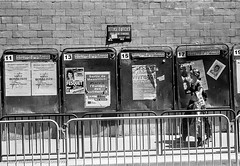 Defense d'Afficher (gwpics) Tags: child election everydaylife family film france french irony leica lifestyle monochrome mother parent paris people person political politics socialcomment socialdocumentary society streetphotography streetphotos streetpics advert advertisement advertising bw billboard blackwhite blackandwhite children mono poster streetlife