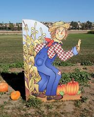 004 Entrance To Pumpkin Patch (saschmitz_earthlink_net) Tags: 2017 california temecula bighorsefeedandmercantile cornmaze orienteering laoc losangelesorienteeringclub corn