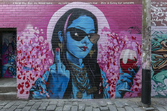 Heesco Windsor 2017-10-15 (5D_32A3780) (ajhaysom) Tags: heesco artistslane aerosolalley windsor melbourne streetart graffiti canoneos5dmkiii canon1635l