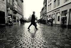 crossing (Bernhardt Franz) Tags: crossing man people cobblestone prinzipalmarkt domplatz münster showcase buildings facades sky rainy wet nass regnerisch blackandwhite bw reflections umbrella naskalt überquerung bürgersteig schwimmhaut web
