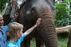 30 juli 2012-Thailand-IMG_0912 (TravelKees) Tags: dijkmannen khaosoknp thailand vakantie youri elephant khaosoknationalpark khaosok