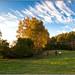 Herbsfarben. Its Autumn Time
