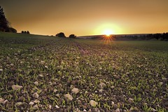 stonefield (tobias-eger) Tags: field blackforest sunset sun red sky horizon yellow orange nature landscape feld schwarzwald sonnenuntergang sonne rot himmel horizont gelb natur landschaft