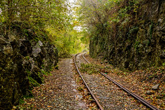 Around the bend (GarethBell) Tags: llangefni wales anglesey northwales dingle rails railway abandoned disused branch stormy cutting sleepers ballast rusty canon 35mm canon6d bend curve outdoors